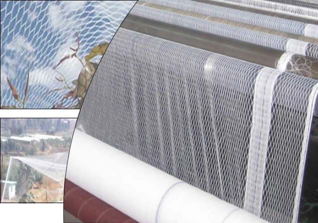 Anti Bird Net in Agricultural and Garden Uses
